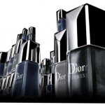Dior Vernis Gris City Nail Polish Collection for Winter 2010