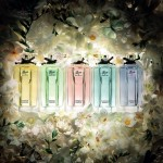 Fragrance Friday:  The Flora Garden Collection by Gucci